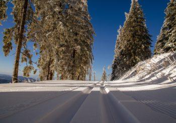 Piste de ski fraîchement damée avec traces de motoneige