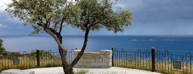sardaigne vue sur la mer avec arbre et balustrade